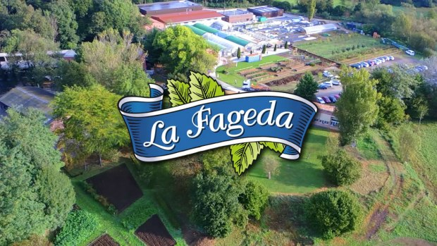 nova_fageda